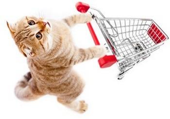 Товары для животных реклама контекстная реклама как продвигать сайт самостоятельно